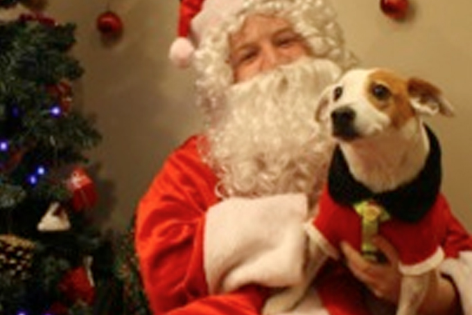 Josie the dog with Santa