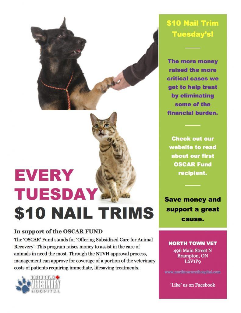 $10 Nail Trim Tuesdays poster
