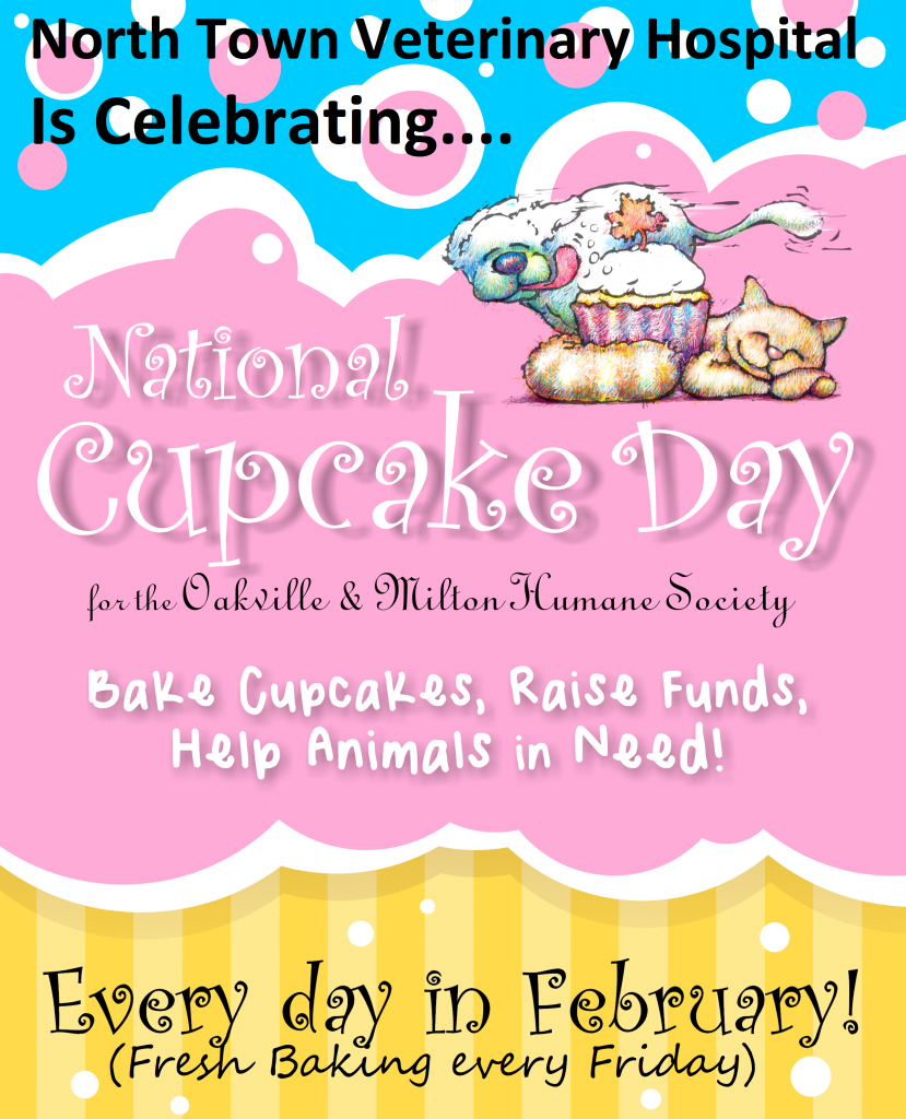 North Town Veterinary Hospital National Cupcake Day poster