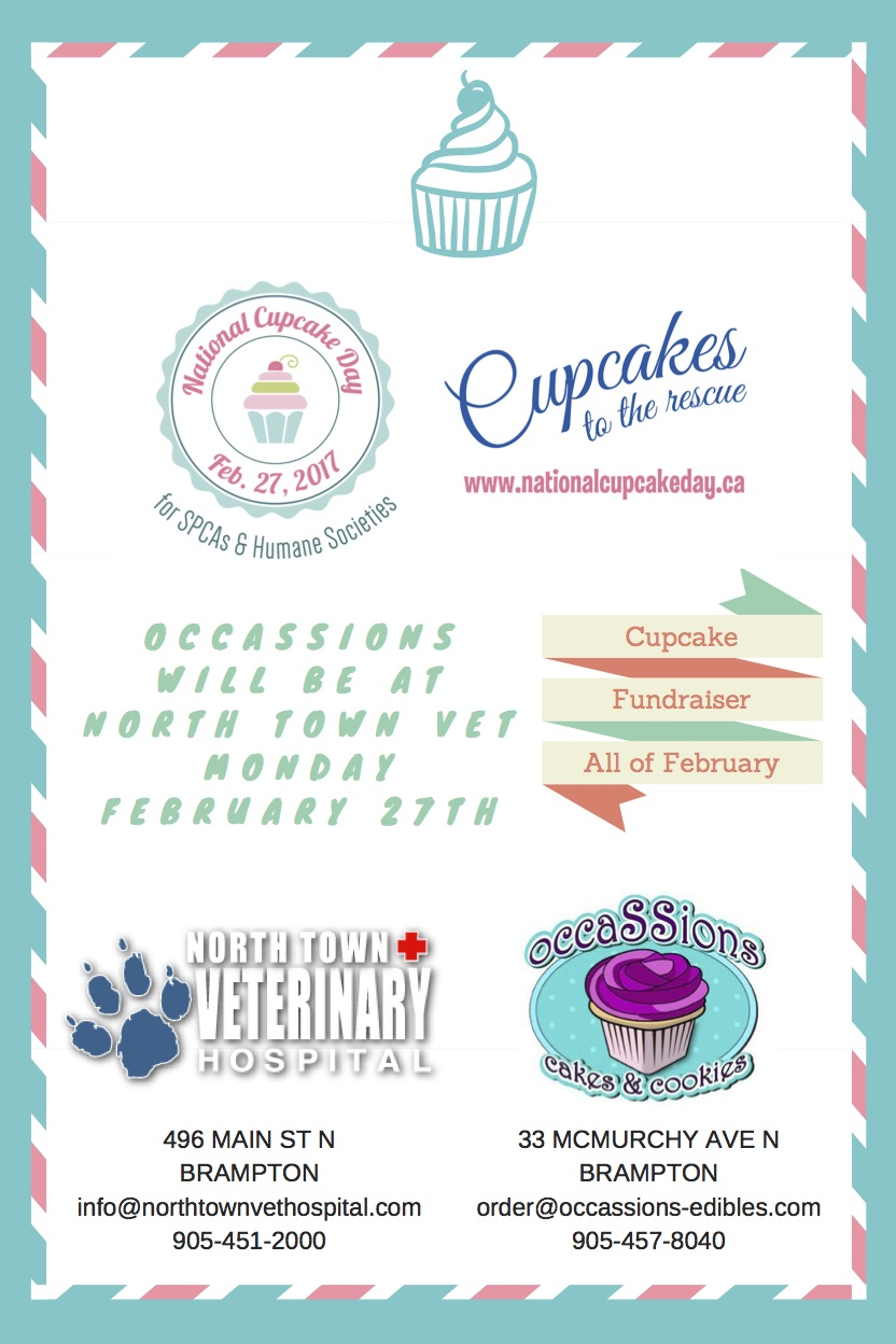 National Cupcake Day flyer