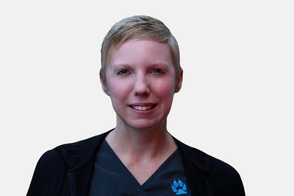 Allison Head Client Services at North Town Veterinary Hospital