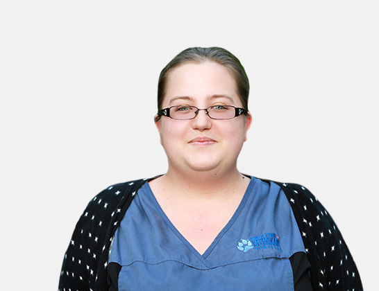 Brittany Seary Animal Care Attendant at North Town Veterinary Hospital