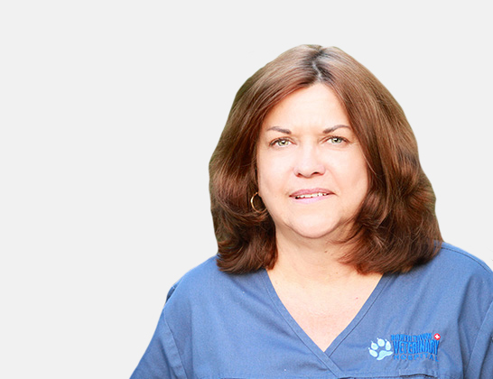 Pat Waters Client Care Representative at North Town Veterinary Hospital